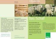 Das Schaf - information.medien.agrar eV
