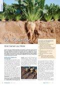 Die Bedeutung des Bodens - information.medien.agrar eV - Seite 6