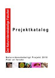 PROJEKTKATALOG 20100125.pdf - Institut for Matematik og ...
