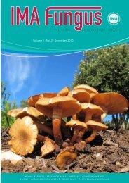 Volume 1 · No. 2 · December 2010 V o lu m e 1 · N o ... - IMA Fungus