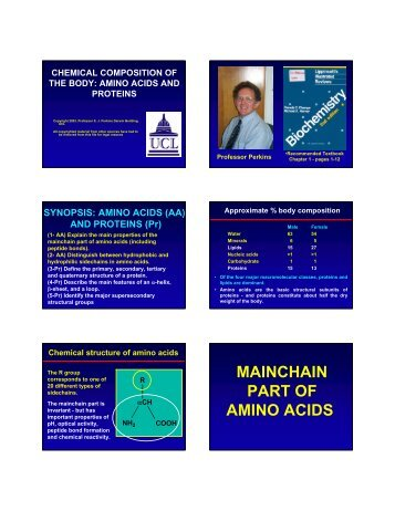 MAINCHAIN PART OF AMINO ACIDS