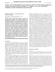 A direct view by immunofluorescent comet assay (IFCA) of DNA ...