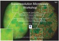 Superresolution Microscopy Workshop - Institute of Medical Biology ...
