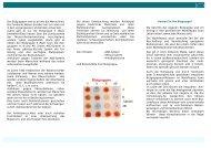 Blutgruppe mit Nothilfepass - IMD Berlin