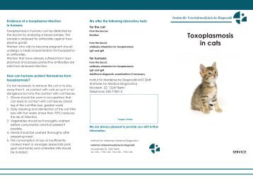 Toxoplasmosis in cats - IMD Berlin