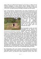 Teufelsstein & Hexentanzplatz I - Seite 7