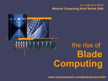 Computing Blade - IMEX Research