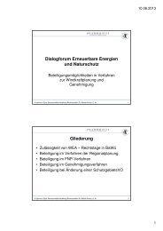 Dialogforum Erneuerbare Energien und Naturschutz ... - BUND