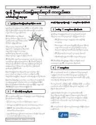 Japanese Encephalitis Vaccine - Burmese