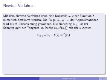 Newton-Verfahren - imng