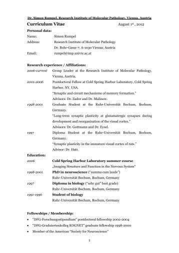 cv best examples examples of good and bad cvs cv plaza examples