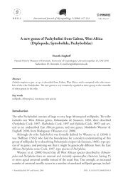A new genus of Pachybolini from Gabon, West ... - Books and Journals