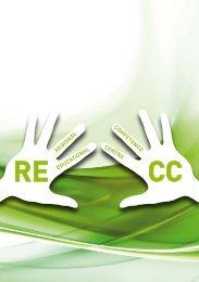RECC-Folder - IMST