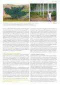 Info HAFL - Berner Fachhochschule - Seite 5
