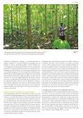 Info HAFL - Berner Fachhochschule - Seite 7