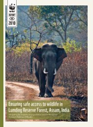 Ensuring safe access to wildlife in Lumding Reserve Forest PDF ...