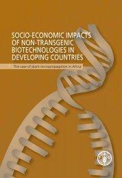 SOCIO-ECONOMIC IMPACTS OF NON-TRANSGENIC ... - FAO.org