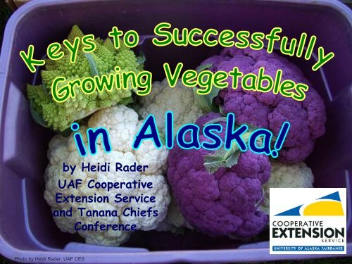 Vegetable Gardening - Indian Country Extension