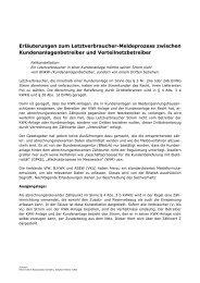Erläuterungen zum Letztverbraucher-Meldeprozess (PDF ... - VfW