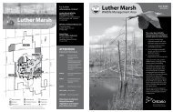Luther Marsh Wildlife Management Area - Grand River Conservation ...