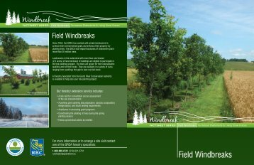 Windbreak Factsheet series - Grand River Conservation Authority