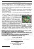 IH-Konzept-Projekte-farbig 5.8.11 - Indienhilfe Herrsching - Page 4