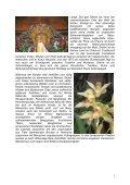 Sikkim Kulturreise - Indo Orient Tours - Page 2