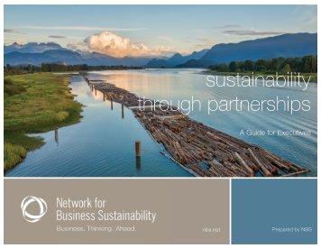 NBS-Partnerships-Executive-Report