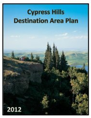 Cypress Hills Destination Area Plan - IndustryMatters.com