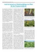 Leseprobe BSH 6/2013 - ALPINETGHEEP - Page 3