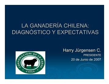 LA GANADERÍA CHILENA: DIAGNÓSTICO Y EXPECTATIVAS