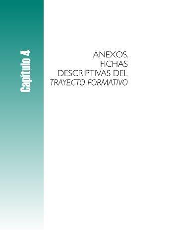 4. Anexos. Fichas descriptivas del Trayecto formativo - Instituto ...