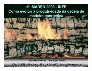 Como evoluir a produtividade da cadeia da madeira energética - INEE