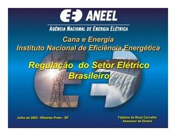 Regulação do Setor Elétrico Brasileiro Regulação do Setor ... - INEE