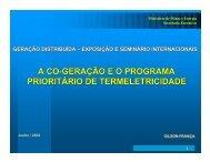 a co-geração eo programa prioritário de termeletricidade - INEE