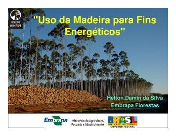 O Uso da Madeira para Fins Energéticos - INEE