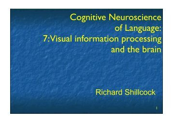 Cognitive Neuroscience of Language: 7: Visual information ...