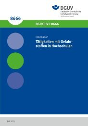 GUV-I-8666 - Chemie