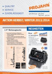 PDF Aktion Herbst/Winter 2013/2014 - Projahn