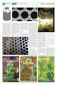 167 - Hanfjournal - Page 7