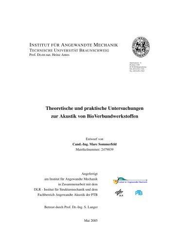 Theoretische und praktische Untersuchungen zur Akustik von ...