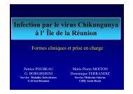 Infection par le virus Chikungunya à l' Île de la Réunion - Infectiologie