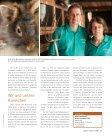 Belgische Bartkaninchen - Herten erleben - Seite 2