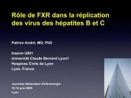 Rôle de FXR dans la réplication des virus des ... - Infectiologie