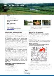Felchowsee - NABU-Stiftung Nationales Naturerbe