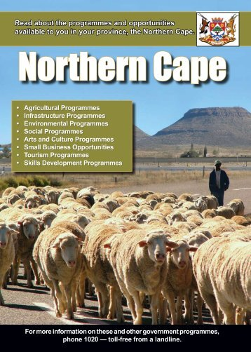 Guide to economic opportunities - South Africa Government Online