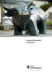 Anlage-Blickwinkel 2013/2014 - Urner Kantonalbank