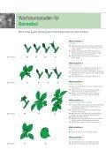 Pflanzenschutz Obst - Beiselen - Seite 3