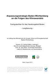 Anpassungsstrategie an den Klimawandel - Baden-Württemberg