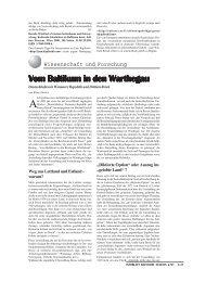 von Staden: Ende und Anfang - INFOBALT